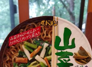 Itomen Cup Sansai Soba, or the Panda Returns!